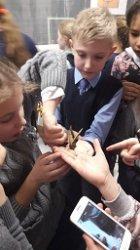 4 «А» класс посетил выставку живых тропических бабочек