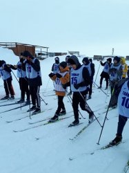 Соревнования по лыжным гонкам